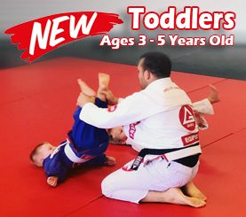 Toddlers Martial Arts Classes ages 3-5 Years Old in Trinity & New Port Richey Florida